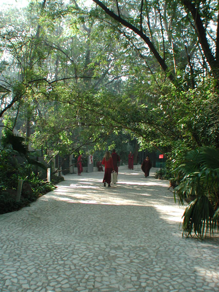 path along Buddha Hall